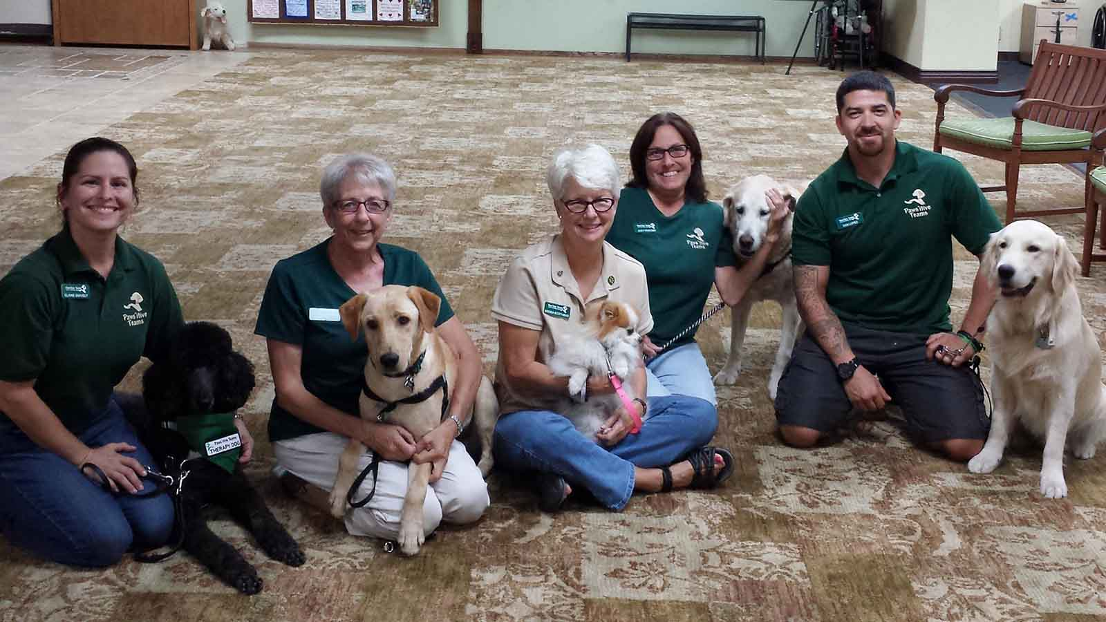 One spot left in our April 2020 Therapy Dog Prep School!