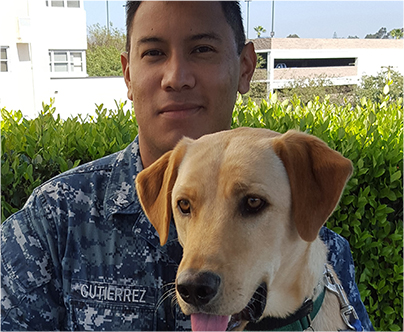 Pre-Application For San Diego Veterans Service Dog Placement